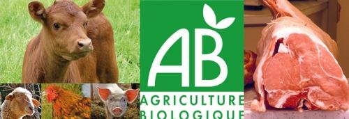 Moins de contaminants chimiques dans les aliments bio?